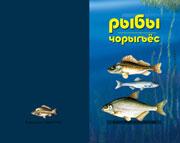 Рыбы - Чорыгъёс - Обложка